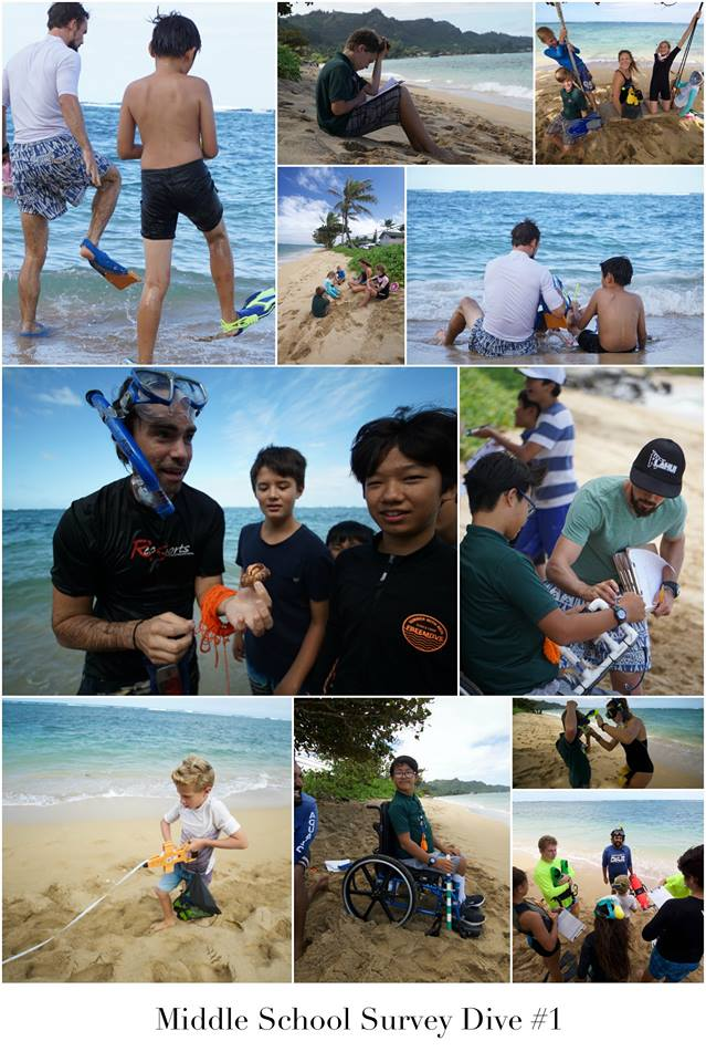 Reef Survey